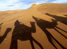 Marrakech To Marrakech (9 Days) Souks & Sand Dunes Tour