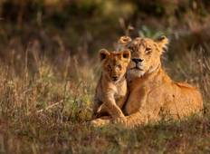 Kenya: Wildlife Rangers Expedition Tour