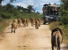 Kruger and Victoria Falls Accommodated Tour