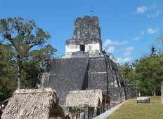 Tikal  Ruins and forest tour Tour