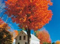 New England\'s Fall Foliage (9 destinations) Tour