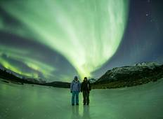 Arctic Lights & Whales Tour