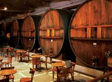 Mendoza Wineries Independent Adventure Tour