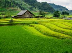 Spectacular Sapa - 3 Days Tour