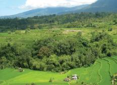Bali Cycle Adventure Tour