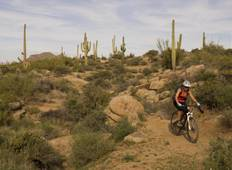 Guided Sonoran Desert Mountain Biking 5 Days Arizona (from Scottsdale to McDowell Mountain Regional Park) Tour
