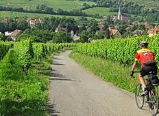 Cycling the Vineyards of Alsace Plus! the Black Forest Tour