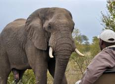 Kruger Experience – Independent Tour