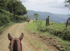 Costa Rica Flexipass 5 with 1 free activity Tour