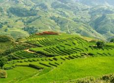 Sapa Trekking (4 days) Tour