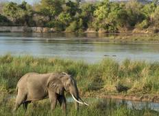 Day Trip - Lake Manyara National Park Tour