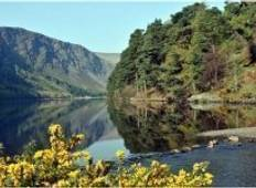 5 Day Walking in Wicklow Tour