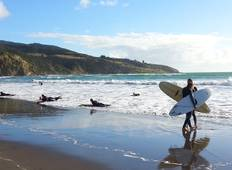 Stray NZ - Beach Hopper (North Island) Tour