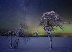 Northern lights adventure to Northern Lapland, Vasatokka Tour