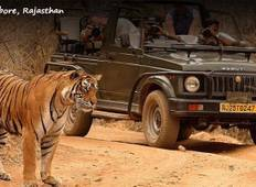 Luxury Golden Triangle Tour with Ranthambore Tour