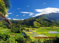 Hawaiian Discovery (8 destinations) Tour