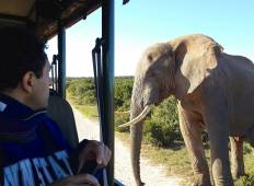 6-Day Garden Route & Addo Adventure Tour Tour