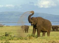 Kenya & Tanzania: The Safari Experience with Nairobi & Zanzibar Tour
