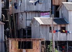 Brazil Highlights with Brazil\'s Amazon & Salvador Tour