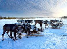 Lapland & the Arctic Circle - 5 Days Tour