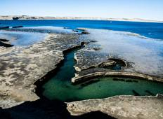 Puerto Madryn Explorer Tour