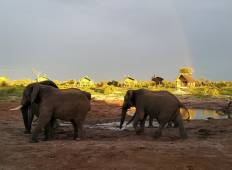 Southern African Safari Accommodated Tour
