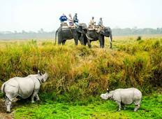 Wonders of North-East with Wildlife in Kaziranga Tour