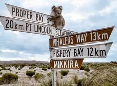Best of Port Lincoln & Coffin Bay Tour Tour
