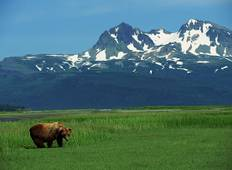 Alaskan Wildlife & Wilderness (11 destinations) Tour