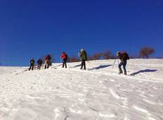 Transylvania Winter Walk & Snowshoe Tour