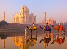 Golden Triangle India Tour w/ Meals  Tour