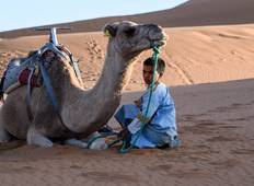 Morocco & the Sahara Desert Tour including Mystical Marrakech Tour