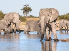Jewels of Africa with Chobe National Park Area & Kruger National Park Area Tour