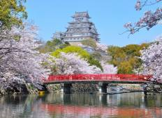 Japan Cherry Blossom Tour with Hiroshima - Beautiful Japan Tour