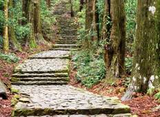 Kumano Kodo self-guided walking 5 days Tour