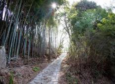 Nakasendo Trail self-guided walking 10 days Tour