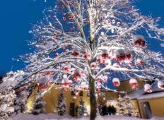 Danube Holiday Markets - Budapest to Passau Tour