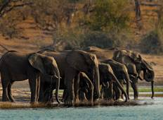 Epic African Adventure Tour