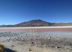 Bolivian Salt Flats & Andean Desert Short Break Tour