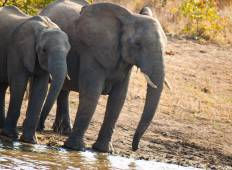 Cape Town, Kruger & Namibia National Geographic Journeys Tour