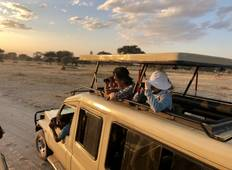 Serengeti African Safari - A \'Glamping\' Experience - (PRIVATE TRIP) Tour