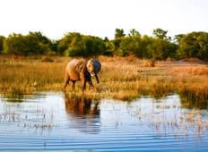 Southern Africa: travel to the ends of the earth (12 destinations) Tour