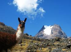 Lares Trek to Machu Picchu in 4 Days Tour