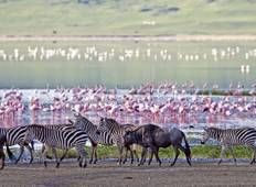 Tanzania Uncovered 10 Days Tour