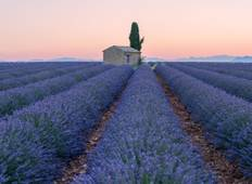 Burgundy & Provence for Wine Lovers - Cruise Only Tour