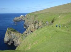Wildlife Adventures - The Shetland Isles Tour