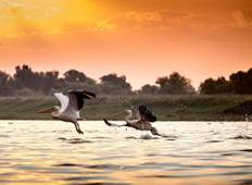 Private four days safari experience to the Danube Delta from Bucharest Tour