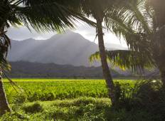 Hawaii - Hidden Treks of Hawaii - 2018 FHHW English Tour