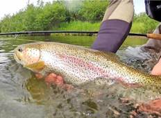 Backcountry Fly Fishing Adventure Tour