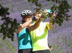 Bike Tour, Provence, France (self-guided) Tour